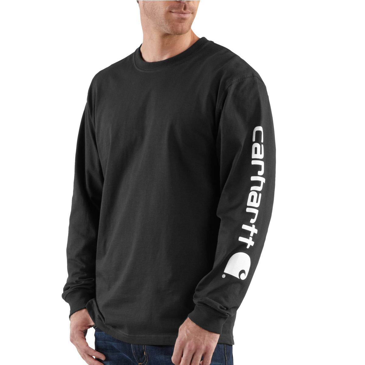 Carhartt Men's Signature Sleeve Graphic Long Sleeve T Shirt