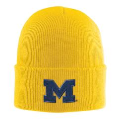 Carhartt Men's Michigan Acrylic Watch Hat