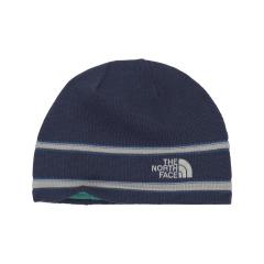 The North Face Logo Beanie - Discontinued Pricing