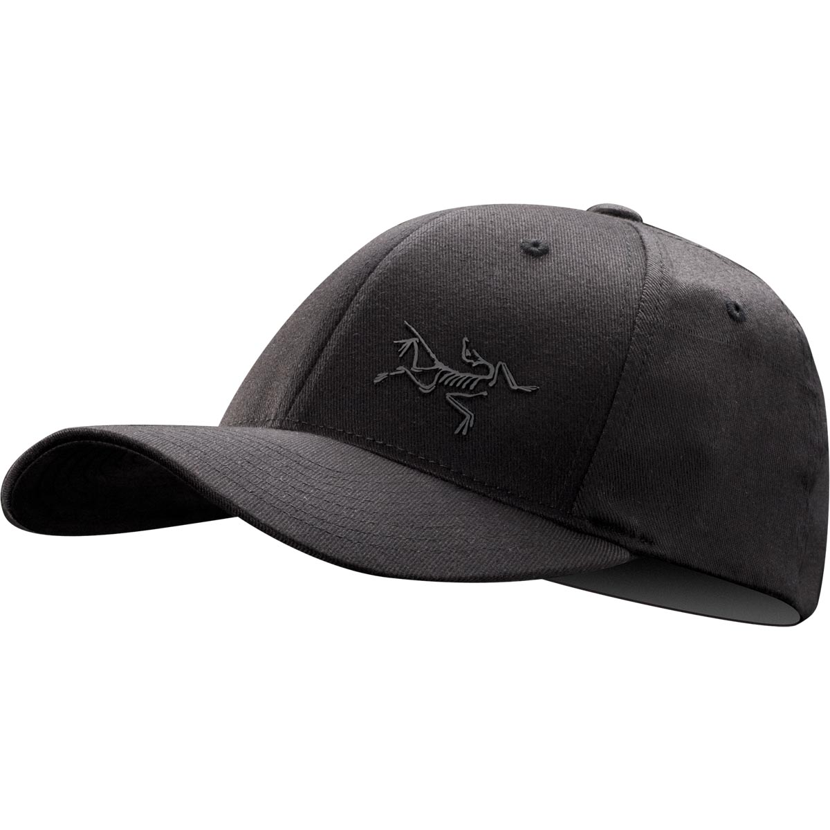 Arcteryx Men's Bird Cap