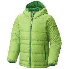 Boys' Gold 550 TurboDown Hooded Down Jacket - Discontinued Pricing