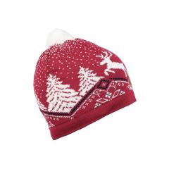 Women's Dale Christmas Hat